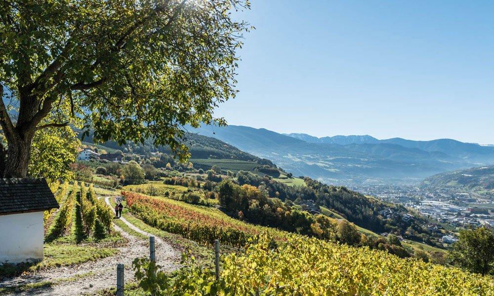 Sunnseitnweg di Bressanone